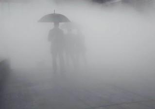 More Umbrellas in the mist