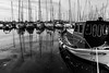 the boats (nancy_rass) Tags: reflection greece greek dock pier boat sea vintage contrast monochrome greyscale sailing sailboat faliro