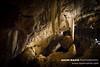 Ngilgi Cave, WA (Naomi Rahim (thanks for 3.8 million visits)) Tags: westernaustralia wa 2017 australia travel nikon nikond7200 cave travelphotography wanderlust nature dark lowlight margaretriver tourism 1116mm stalactites stalagmite rockformation roadtrip ngilgicave yallingupcave yallingup karst