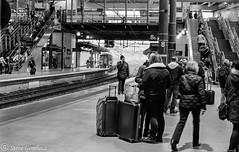 Christmas get away, waiting for a train. (steve.gombocz) Tags: station leedsstation railwaystation platform olympus people olympususers olympusamateurs olympuszuikodigitalclub olympusm25mmf18 olympusem5mark2 olympusomd blacknwhite greyscale bw monochrome streetscene blackwhite bwphotos bwstreetscene bwstreet flickrbw bwflickr blackwhitephotos blackwhitephotography blackwhitephotographs flickrstreet blackwhitestreet bwstreetphotography streetlife street blackandahite streetphotographs bwphotographs streetphotography streetbw bwphotography photosinblackandwhite bwpictures flickraddict blackandwhitephotographs purestreet out outandabout streetpictures streetphotos flickr exploreflickr leeds leedsbw exploreleeds flickrleeds zwartwit neroebianco sortoghvid mustavalkoinen svarthvitt svartoghvitt svartochvitt pretoebranco noiretblanc schwarzundweiss negroyblanco noirblanc schwarzweiss negroblanco pretobranco nerobianco xmas digital