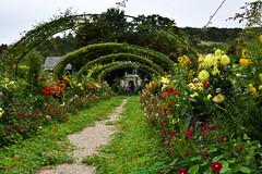 Les merveilleux jardins de Giverny (Normandie) (Annelise LE BIAN) Tags: claudemonet essonne eure fleursetplantes giverny jardins normandie france alittlebeauty coth coth5