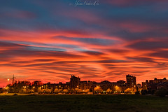 October 29th 2017 sunset near Milan, Italy. (explored) (Massimo Cavalieri d'Oro) Tags: sunset magic wonderful amazing sky clouds landscape town city trees sun tramonto nuvole cielo october octobersky ottobre autunno autumn fall italia italy skyline città crepuscolo twilight