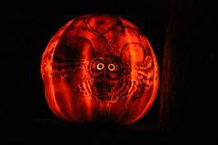 IMG_6563 (comtrag) Tags: jackolanterns rogerwilliamszoo rhodeisland halloween pumpkins pumpkincarving