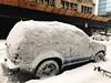 #Grayson #winterstorm #blizzard #newyork #newyorkcity #snow #snowstorm #queens #longislandcity (lelobnu) Tags: grayson winterstorm blizzard newyork newyorkcity snow snowstorm queens longislandcity