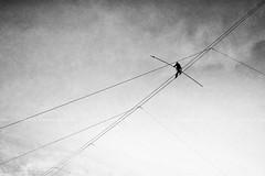 """Funambulist (Carlo """"Granchius"""" Bonini) Tags: carlobonini panasoniclumixgx8 bianconero graphic funambulist funambolo wire highwire perugia"""