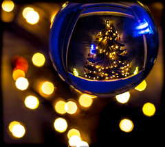 Christmas and the crystal ball. . . (CWhatPhotos) Tags: cwhatphotos crystal ball light reflection reflections orb circular glass happy holidays canon 5d mk iii 100mm prime lens colors color colours colour picture pictures photo photos image images foto fotos that have which contain xmas christmas crimbo tree wood wooden solid lights festive time new year 2017 2018 christmastree