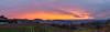 Sunset behind the Vosges (Che Camera) Tags: badenwürtemberg bischoffingen gegenlicht ilec6300 kaiserstuhl sigma30mmf14dcdn sigma sonnenuntergang sonyalpha6300 teamsony vogtsburg weinberg sunset vineyard vogtsburgimkaiserstuhl badenwürttemberg deutschland de