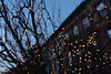 3385 Wrapped (JoelZimmer) Tags: 24mmf28 bokeh brooklyn christmaslights newyork nikond750 parkslope unitedstates us