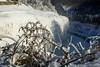 20180103-DSC_9124 (the Mack4) Tags: 2018 geneseeriver ice january letchworth newyork water