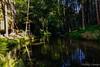 Vysoka lipa (Nelleke C) Tags: 2017 bohemen národníparkčeskéšvýcarsko oosteuropa tsjechië vysokalipa bos holiday landscape landschap river rivier rocks rots steen stone vakantie woodland
