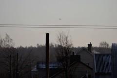 DSC_2890 (sauliusjulius) Tags: baf belgian air force bap baltic policing quick reaction alert qra ämari base suurküla eeei sqq eysa siauliai lithuania