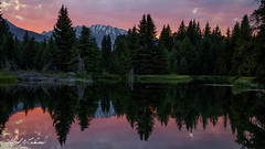 Dusk Reflections_27A0324 (Alfred J. Lockwood Photography) Tags: alfredjlockwood nature landscape evening dusk twilight color clouds reflection snakeriver schwabacherlanding riverbank rockymountains spruce trees forest serene summer wyoming grandtetonnationalpark