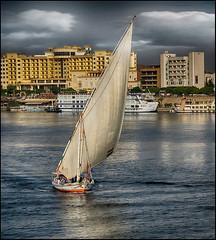 (2655) Creuer pel Nil (Egipte) (QuimG) Tags: nil nilo nile egipte egypt quimg quimgranell joaquimgranell