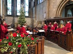 Christmas Minster (BiggestWoo) Tags: christmas tree cassock violin string strings church sing choral choristers chorister choir minster grimsby