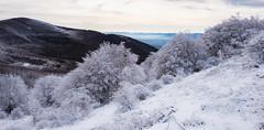 20171231_WES_0119 (Veselin Bonev) Tags: bulgaria shipka winter december