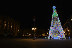 L'albero in piazza - The Christmas tree in the square. (sinetempore) Tags: natale christmas alberodinatale christmastree lucidinatale christmaslights piazzacastello torino turin street natale2017 sera evening lalberoinpiazza thechristmastreeinthesquare