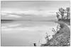 the way to Avalon (stevefge) Tags: 2017 hoogwater nijmegen nevengeul landscape waterscape water waal winter mist trees bomen path nederland netherlands nl nederlandvandaag reflectyourworld gelderland blackandwhite bw zw zwartwit monochrome mono
