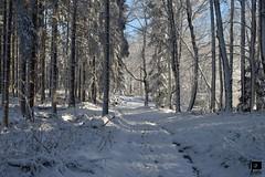 Winter Fairytale (4) (Ivica Pavičić) Tags: