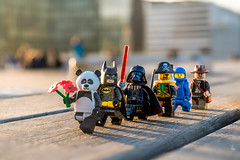 Me and my friends (Ballou34) Tags: 2017 7dmark2 7dmarkii 7d2 7dii afol ballou34 canon canon7dmarkii canon7dii eos eos7dmarkii eos7d2 eos7dii flickr lego legographer legography minifigures photography stuckinplastic toy toyphotography toys stuck in plastic panda pirate batman darth vader lightsaber starwars star wars sw space spaceman indiana jones flower flowers red sunset library paris îledefrance france fr