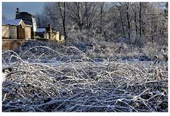 Presso un camposanto (Alfoja) Tags: neve inverno winter snow camposanto alfoja lucianofoglia foglia santa maria visitpiedmont visitpiedmontitaly piemonte piedmont roasio