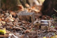 Wild Boar Piglet ( origami ) (Adri 79) Tags: adrianodavanzo origami paper jozsefzsebe wild boar piglet canon7dmarkii sigma105mmf28exdgoshsm