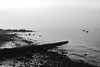 all this silence (bluechameleon) Tags: sharonwish thirdbeach blackandwhite bluechameleonphotography bw emptiness fog frost logs loneliness lonely ocean rocks seawall vancouver water winter sea sky bay landscape pacificnorthwest ngc