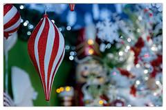 Season's Greetings Everyone. (marypink) Tags: xmas decorations light atmosphere focus bokeh nikond800