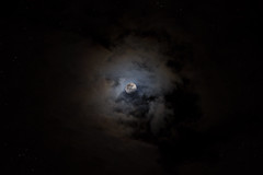 A New Day Will Come (Lemoné) Tags: starry night stars moon dark nuvole clouds luna luce notte buio