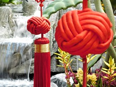Chinese New Year 2017 (kenjet) Tags: lv vegas lasvegas nevada decorations chinese luck newyear chinesenewyear 2017 feb february bellagio bellagiohotel red