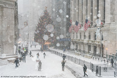 NYSE (20180104-DSC06775) (Michael.Lee.Pics.NYC) Tags: newyork nyse newyorkstockexchange wallstreet broadstreet christmastree winter snow architecture cityscape sony a7rm2 fe24105mmf4g