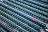The Red Seat, Fenway Park, Boston (ncs1984) Tags: fenwaypark fenway park boston baseball mlb usa massacusetts mass new england america us travel canon green red pattern abstract color colour colours colors seat chair row line lines stadium