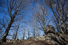 2016-03-08 - 20160308-018A1142 (snickleway) Tags: canonef1740mmf4lusm france céret languedocroussillonmidipyrén languedocroussillonmidipyrénées fr