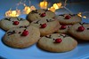 Happiness is... (Maria Godfrida) Tags: xmas christmas biscuits cookies rudolph rednosed light closeup leftovers dessert food delicious sweets tasty funny cute homemade reindeer 7dwf