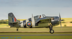 Grumman Wildcat FM2-7765 (_OKB_) Tags: duxford2016 grumman aviation war avia avion sky history royal navy uk duxford panning sigmalens sigma150600sports nikon d7200