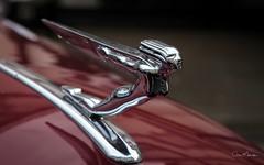 The Auburn Speedster (Bonnet/Hood) Mascot. (clive_metcalfe) Tags: auburnspeedster mascot bonnet hood car automobile