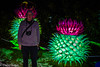 LANTERNS-25 (Claire Quinn) Tags: edinburghzoo giantlanterns lanterns giantlanternsedinburgh