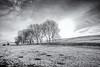 The White Peak (Rob..Hall) Tags: robhall squarephotography england uk derbyshire peakdistrict landscape blackandwhite monochrome winter snow