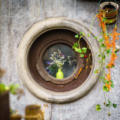 In the window (Brînzei) Tags: aviatorilor bucurești jupiter985mmf2mc lzos m42 sonya7 cavemanart flowers green ladybirds manualfocus ornaments round squareformat vase windows ★ explored