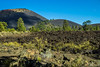 lava fields and sunset crater, Arizona, USA (Russell Scott Images) Tags: sunsetcratervolcanonationalmonument arizona usa cinder cone russellscottimages