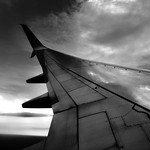 Reflections off an Airplane Wing (Black & White) thumbnail