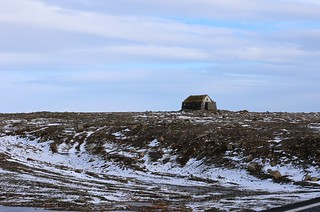 IMG_9989 Near Holmavik, Iceland