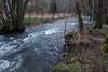 Rain transportation (RIch-ART In PIXELS) Tags: belgique ardennes belgium water tree forest fields stream river riverside leicadlux6 leica dlux6 rapids paliseul creek wood grass