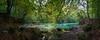 Urederra - la magia del agua (Juan Ig. Llana) Tags: urederra baquedano estellaoriental navarra españa es otoño río arroyo cascada agua turquesa árbol bosque hayedo hojas ramas reflejo zb