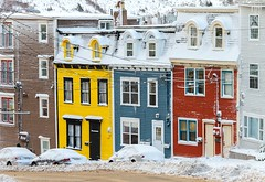 After the Storm (Karen_Chappell) Tags: stjohns jellybeanrow rowhouse house downtown canada atlanticcanada avalonpeninsula snow winter december houses yellow blue red brown white newfoundland nfld city urban eastcoast multicoloured colourful colours colour street prescottstreet