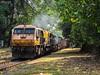 Imported Jewel (mohammedali47) Tags: goldenochre emd indianrailways locomotives goa boxn suravalii wdg4