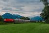 Rh.1116.086 ÖBB (Andrea Sosio) Tags: rh1116 086 taurus siemens merci osterreichischebundesbahnen obb treno train beschling nenzing vorarlberg austria nikond60 andreasosio