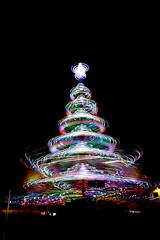 Illuminations de Noël (Patatitphoto) Tags: tree christmas noël nuit night bokeh sapin lumière light illuminations toulouse street photography