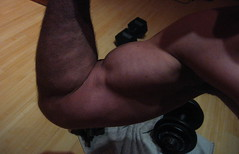 BICEPS (flexrogers963) Tags: flex flexing muscle muscles muscular musclemodel bicep biceps bizeps pecs traps guns chest abs