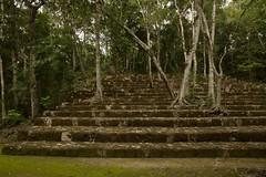 Balamku Mayan Ruins 3 (elhawk) Tags: mexico campeche ancient balamku mayanruins maya staircase