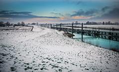 Porcelain skin (Ingeborg Ruyken) Tags: ochtend morning dropbox 2017 empel trees bomen 500pxs dawn empelsedijk sneeuw natuurfotografie doornkampsteeg december flickr snow